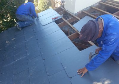 Roof replase (1)